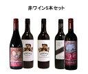 5本厳選 赤ワインセット フランス オーストラリア