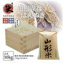 はえぬき 30kg 送料無料 お米 コメ 山形県産 令和2年産 精米 玄米 無洗