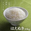 はえぬき 30kg 送料無料 お米 コメ 山形県産 令和2年産 精米 玄米 無洗米