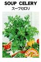 【藤田種子】セロリ スープセロリ野菜のタネ