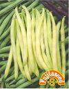 【藤田種子】黄いんげん2野菜のタネ