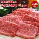 「阿波牛の藤原」黒毛和牛!とろける焼肉セット(松) 黒毛和牛 焼肉セット 国産 送料無料 焼肉 焼き肉 お肉 牛肉