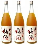 梅乃宿 あらごし梅酒1800ml×3本セット ※沖縄は別途送料が加算となります。 【smtb-td】05P25Oct14