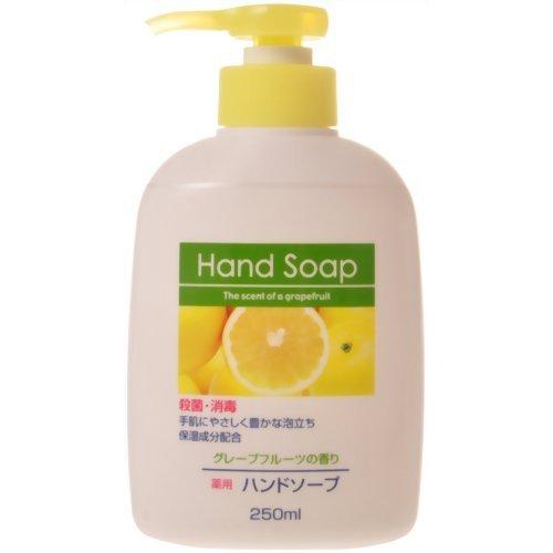 薬用ハンドソープ グレープフルーツの香り 本体 250ml 〔まとめ買い240個セット〕:フジックス