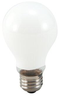 寫基礎供使用極大地的電燈(20W)
