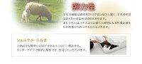 【送料無料】コンセント付きチェストベッド【Spass】シュパース【羊毛デュラテクノスプリングマットレス付き】シングルホワイト収納ベッド【】【10P01Mar15】