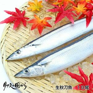 生秋刀魚【秋刀魚 宅配】秋刀魚 10尾【気仙沼港直送】生さんま