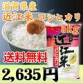 滋賀「近江米コシヒカリ」5kg