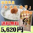 【28年産】「キヌヒカリ」滋賀県産 白米 10kg 【RCP】
