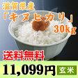 【送料無料】 【28年産】「キヌヒカリ」滋賀県産 玄米 30kg【RCP】