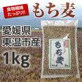 【国産もち麦】愛媛県東温市産「もち麦」1kg