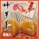 柿羊羹 6個入 柿 かき 羊羹 ようかん