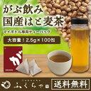 【はと麦茶ミニパック100包】国産はと麦茶100%|マイボトル専用ふくちゃのがぶ飲みはとむぎ茶ティーバッグ2.5g×100包|ハト麦健康茶(美容茶、お茶)鳩麦茶|送料無料のハトムギ茶|ノンカフェイン|お茶|送料無料【250項目農薬・放射能検査済み】