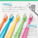 送料無料 20本入り(5色各4本) 歯科医院用歯ブラシ FP28-M(ふつう) 3