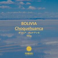 ボリビアチョケアンカ【丁寧な有機栽培】◆100g◆中煎り