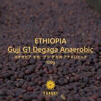 エチオピアモカグジデガガアナエロビック