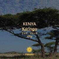 ケニアカリンガ100g