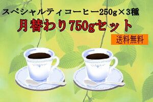 【送料込】月替わり750gセット(250g×3種)/スペシャリティコーヒー・こだわり自家焙煎珈琲豆