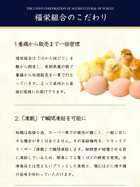 【送料無料】はかた地どりもも肉1kg国産地鶏急速冷凍機能性表示食品生肉長期保存真空パック備蓄博多お取り寄せ鍋焼鳥4〜5人前