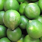 熊本産レモン(メイヤー)ノーワックス! 九州熊本さ角町産有機肥料を使用 A級品5kg週2〜3日ですので期日指定はできません