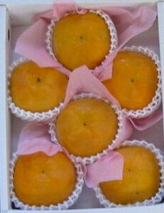 食べたらビックリ!福馬果樹園シンデレラ太秋 6A玉 化粧箱入りお届けは9月下旬から お急ぎの...