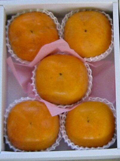 熊本益城産シンデレラ太秋5玉(大玉)化粧箱入りお届けは10月下旬頃から