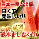 すいか2玉いり 熊本益城町産直 S〜Mサイズ