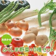 送料無料ふくしま新鮮野菜おまかせ10種