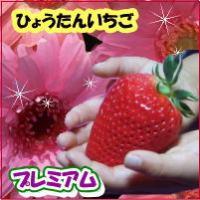 いちご プレミアムな大粒&プレミアムな甘さと香り 苺 (送料無料)ひょうたん いちご みやび 特...