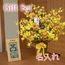 【 送料無料 名入れ 】花 ぷらす 《 竹の 日めくり 電波時計 》 ゴールドストライク 43A70-T-8656 ギフ...