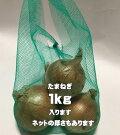 ネットバック1kg【緑】【140/230*350mm】【1束25枚】