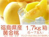 幻の桃『黄金桃・黄貴妃等1.7kg箱(5〜7玉入)』