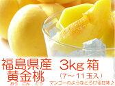 幻の桃『黄金桃・黄貴妃等3kg箱(7〜11玉入)』