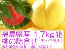 黄金桃と赤い桃の詰合せ1.7kg箱(5〜7玉入)』