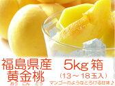 幻の桃『黄金桃・黄貴妃等5kg箱(13〜18玉入)』
