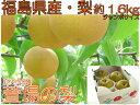 【ジャンボな秀峰梨】福島県かやばの梨(約1.6kg箱約3~4玉入) 【楽ギフ_のし】 532P…