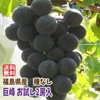 【送料無料】【お試しセット】福島県産の巨峰(2房入)