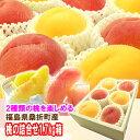 『黄金桃等の黄色い桃と特秀品桃を一緒にした夢の詰合せ♪1.7kg箱(5〜7玉入)』