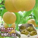 ジャンボな秋峰梨 福島県かやばの梨(約1.6kg箱 3〜4玉...