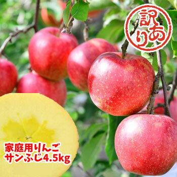 【クーポン利用で20%オフ】福島県産『サンふじ』りんご、4.5kg箱(12〜25玉入)。訳ありご家庭用リンゴ。大きさ不揃い・傷…でも味は一級品