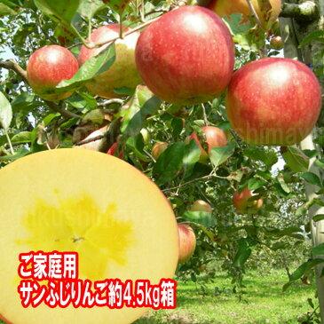 2020早割(〜10/31)福島県産 サンふじ りんご 約4.5kg箱 12〜25玉入 2020年予約 訳あり ご家庭用 リンゴ 大きさ 不揃い 傷 訳ありリンゴ 蜜入 お得 お歳暮 傷あり キズあり おいしい