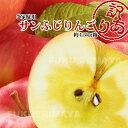 福島県産 サンふじ りんご 約4.5kg箱 12〜25玉入 訳あり ご家庭用 リンゴ 大きさ 不揃い ...