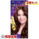 ウエラトーン2+1 クリーム タイプ 6G ×2箱 [宅配便・送料無料]