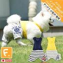 メッシュインナー付No15パイルボーダーパンツ【ネコポス値2】【犬服 ...