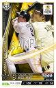 ベースボールコレクション 201901-H009 柳田 悠岐 SR