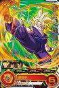 スーパードラゴンボールヒーローズ/SH5-02 孫悟飯:少年期 R