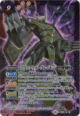 トレーディングカード・テレカ, トレーディングカード  CB11CB05-X01 X2020
