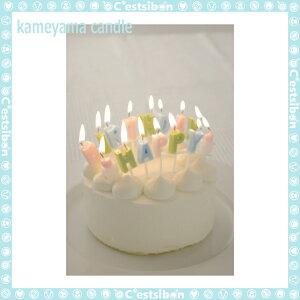 ハッピーバースデーキャンドル【誕生日】【ギフト】【プレゼント】【誕生日ケーキ】【ろうそく】【亀山】【kameyama】