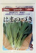 はまつづき小松菜