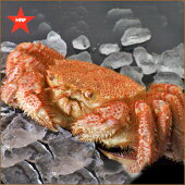 礼文島産浜茹毛がに350g×1尾
